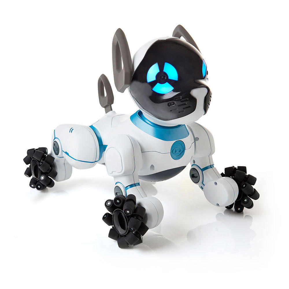 CHiP the Lovable Robot Dog